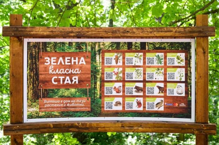 Photo_3_Postbank_Mastercard_Green Outdoor Classroom